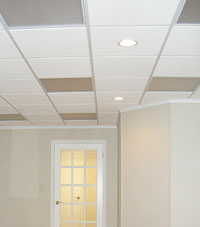 Basement Ceiling Tiles for a project we worked on in Brentwood, New York